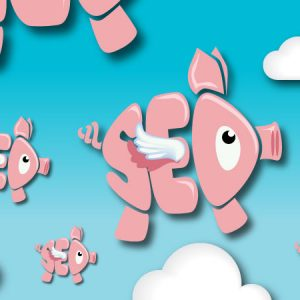 Many of the offers of SEO hucksters are tantamount to pigs flying: they might get airborne momentarily, but they'll come crashing back to earth pretty quick. And leave you with a large mess to clean up.